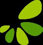 Kidney Stones icon